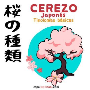 Tipologías de cerezo japonés: infografía